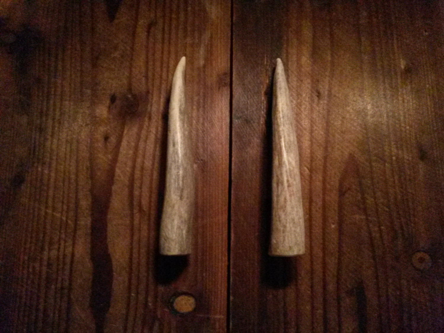 Deer Antler Door Handles Marcopolo Florist Perfect Guide To Set Pertaining  To Dimensions 1500 X 1125