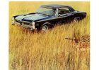 A Safari Themed Ad Showcasing The 1966 4 Door Sedan Lemans With Ohc pertaining to measurements 900 X 1165