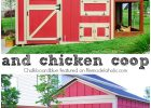 This Is Both A Chicken Coop Run And A Storage Shed And Its Cute within sizing 700 X 1200